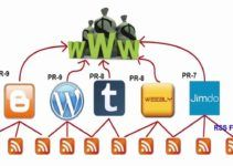 backlinks-profile
