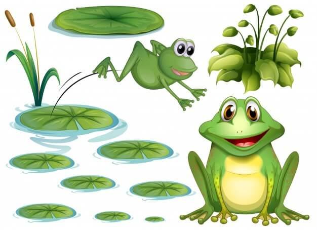 Otimização Onpage com a Perereca Gritante (Screaming Frog)